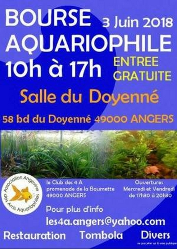 affiche angers 4a