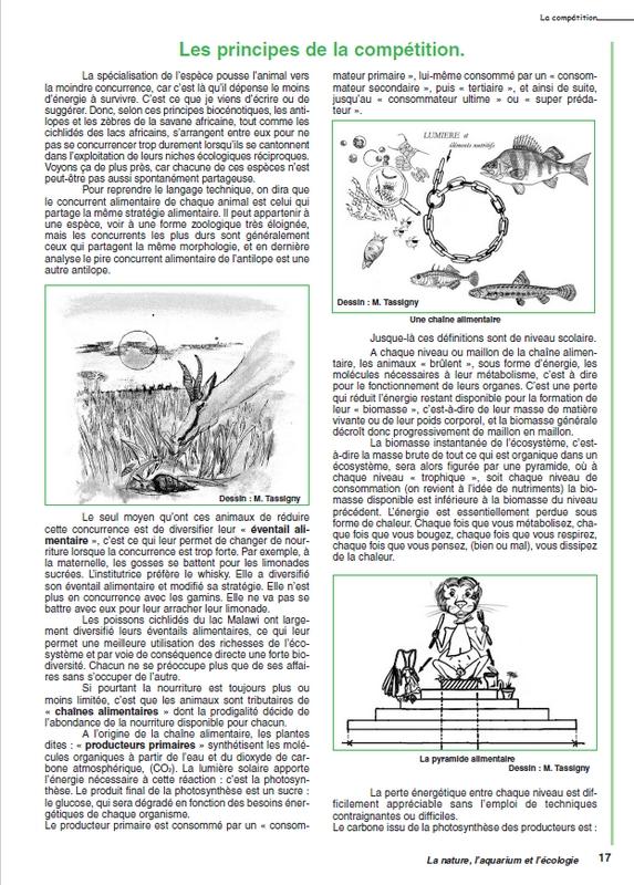 Le site internet de la ffa for Site aquariophilie