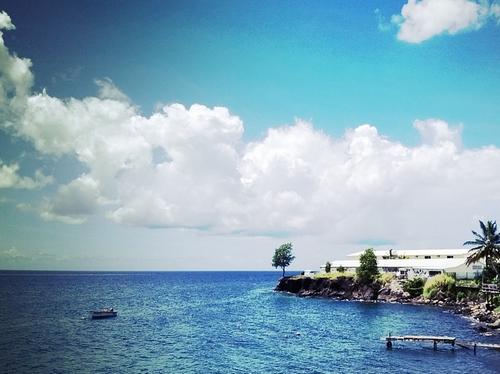 Extension du port de fort de france coraux menac s - Le port de fort de france ...