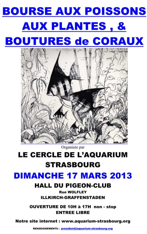 Bourse à Illkirch - 17 mars 2013 Bourse_cas