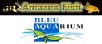 * Partenariat FFA, Amazon Fish & Bleu Aquarium