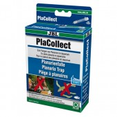 PlaCollect 1